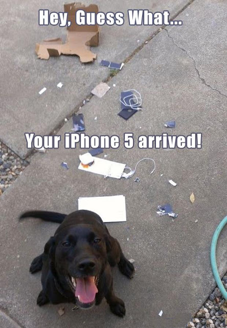 View joke - Hey, guess what ... Your iPhone has arrived !