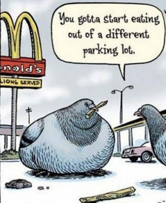 View joke - Dear, you have got to start eating out of a different parking lot.