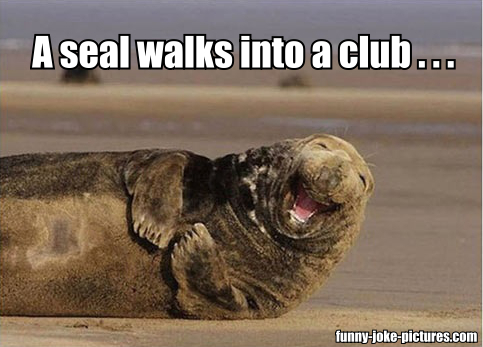 View joke - A seal walks into a club ...