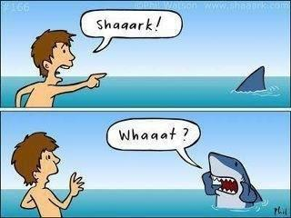 View joke - You scared that poor shark ...