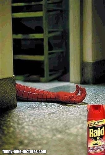 View joke - Raid kills all insects. All of them. Wait, is that Spider-man ?