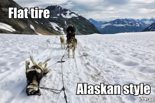 View joke - Last year I visited Alaska. As I was driving I had a flat tire
