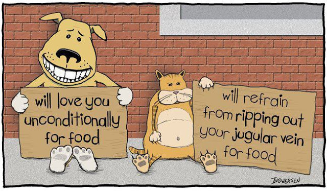 View joke - Dog: I will love you unconditionally for food. Cat: I will refrain from ripping out your jugular vein for food.