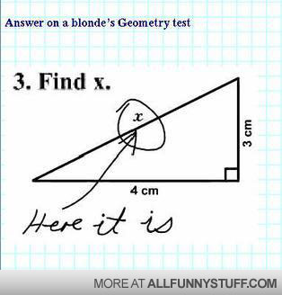 View joke - Answer on a blonde's Geometry test. Find x - there it is. Duh.