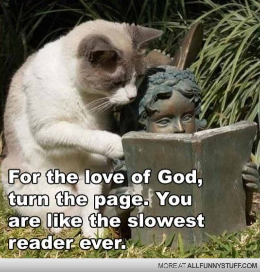 View joke - For the love of god, turn the page. You are like the slowest reader ever.