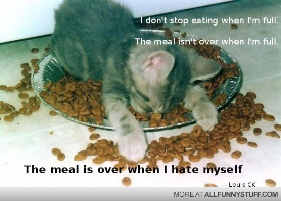 View joke - I don't stop eating when I'm full. The meal isn't over when I'm full. The meal is over when I hate myself.