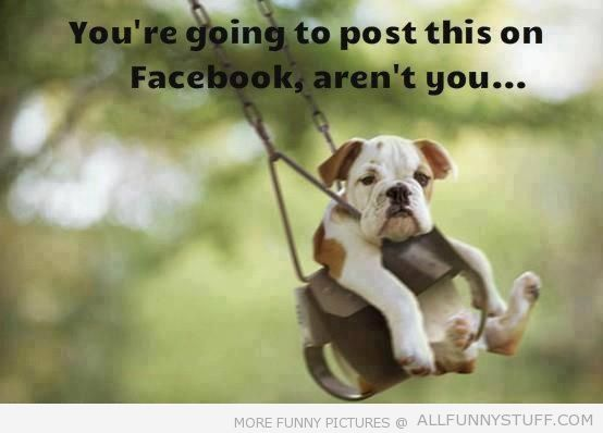 View joke - You are going to post this on facebook, aren't you? Oh, no. You may also put it on Pinterest too.