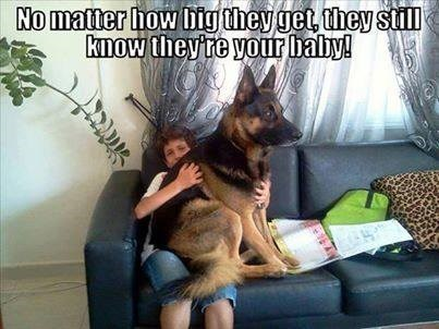 View joke - No matter how big they get, they still know they are your baby.