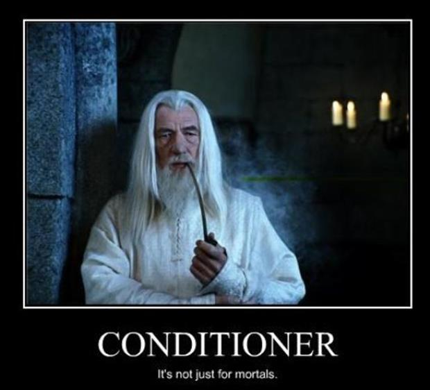 View joke - It makes sense now. Gandalf uses conditioner.
