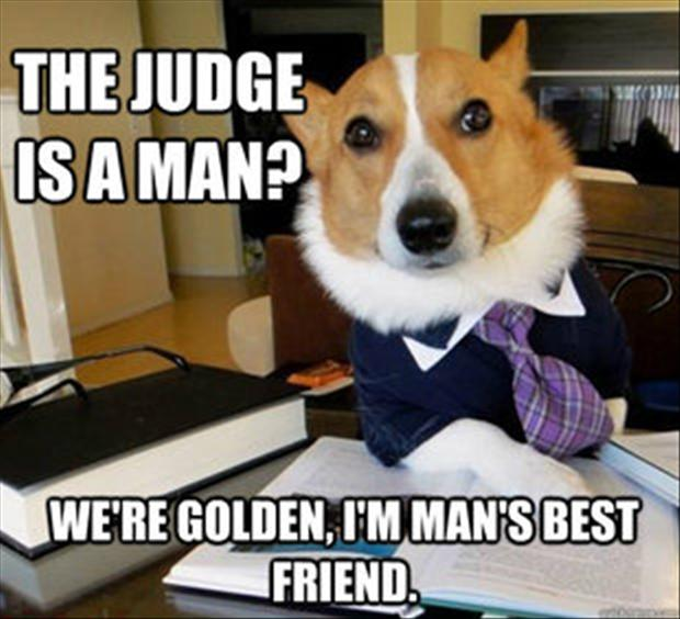 View joke - The judge is a man ? We're golden, I'm man's best friend.