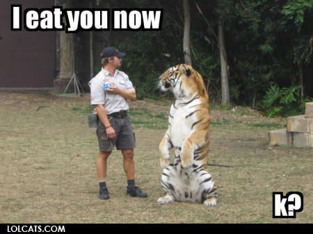 View joke - This tiger is done playing.