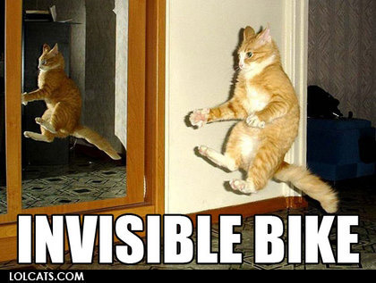View joke - My cat ridding his invisible bike.